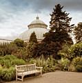 Garden Conservatory by Jessica Jenney