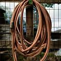 Garden Hose by Yo Pedro