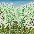 Garden In Blossom by Irina Afonskaya