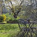 Garden In Spring by Patricia Hofmeester