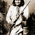 Geronimo by Gary Wonning