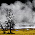 Geysers And Steam Rising In Yellowstone National Park by Lane Erickson