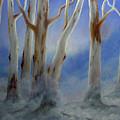 Ghostgum Mist by John Cocoris