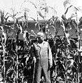 Giant Corn Man by Gerhardt Isringhaus