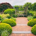 Glorious Garden by Jessica Jenney