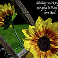 God's Creation by Deborah Klubertanz
