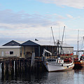 Golden Dolphin Eel Fishing Boat Port Angeles Washington by Barbara Snyder