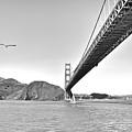 Golden Gate Bridge by John Scharle