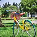 Google Bike Parked Near Googleplex Facility Park by Alex Grichenko