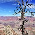 Grand Canyon by Juraj Simek