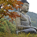 Great Buddha In Autumn by Michele Burgess