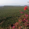 Great Rift Valley Ethiopia by Aidan Moran