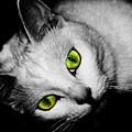 Green Eyes by Angie Tirado