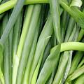 Green Onion Market Bergen by KG Thienemann