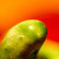 Green Red Liquid Clay by Willard Killough III