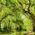 Green River by Dragica Micki Fortuna