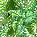Green Tropic  by Mark Ashkenazi