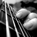Guitar by Maye Loeser