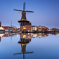 Haarlem by Andre Goncalves
