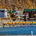 Hammondsport Docks by William Norton