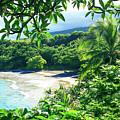 Hamoa Beach Hana Maui Hawaii by Sharon Mau