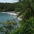 Hamoa Beach Maui Hawaii by Sharon Mau