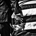 Hand In Flag by Douglas Craig