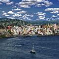 Harbor In Corricella by Anthony Dezenzio