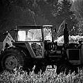 Harvesting The Fields by Jenny Regan