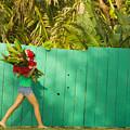 Hawaii Lifestyle by Dana Edmunds - Printscapes