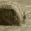 Hay Bale In A Field by Robert Hamm