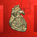 Heart Of Gold - Golden Human Heart On Red Canvas by Serge Averbukh