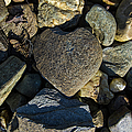 Heart Shaped Stone Loch Fyne  by Gary Eason