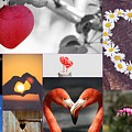 Hearts Collage by Celestial Images