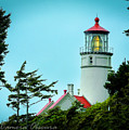 Heceta Lighthouse by Janine Moore