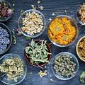 Herbs by Elena Elisseeva