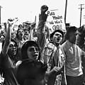Hispanic Anti-viet Nam War Rally Tucson Arizona 1971 by David Lee Guss