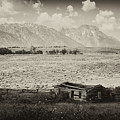 Homestead In The Grand Tetons by Hugh Smith