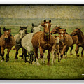 Horses 27 by Ingrid Smith-Johnsen