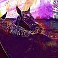 Horses Harmony For Two Animal World  by PixBreak Art