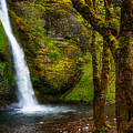 Horsetail Falls by Harry Spitz