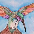 Hummingbird by Lorah Tout