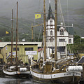 Husavik Harbor Iceland 3660 by Bob Neiman