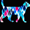 Ice Triangles Cats by Kaylin Watchorn