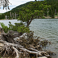 Idaho Lake by Steven Eyre Photography