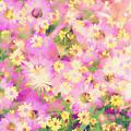 Impressionist Floral Xvi by Tina Baxter