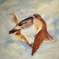In Flight by David Kelly