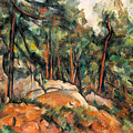 In The Forest by Paul Cezanne