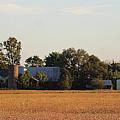 Indiana Farmland  by Scott D Van Osdol