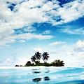 Island by Bert Mailer
